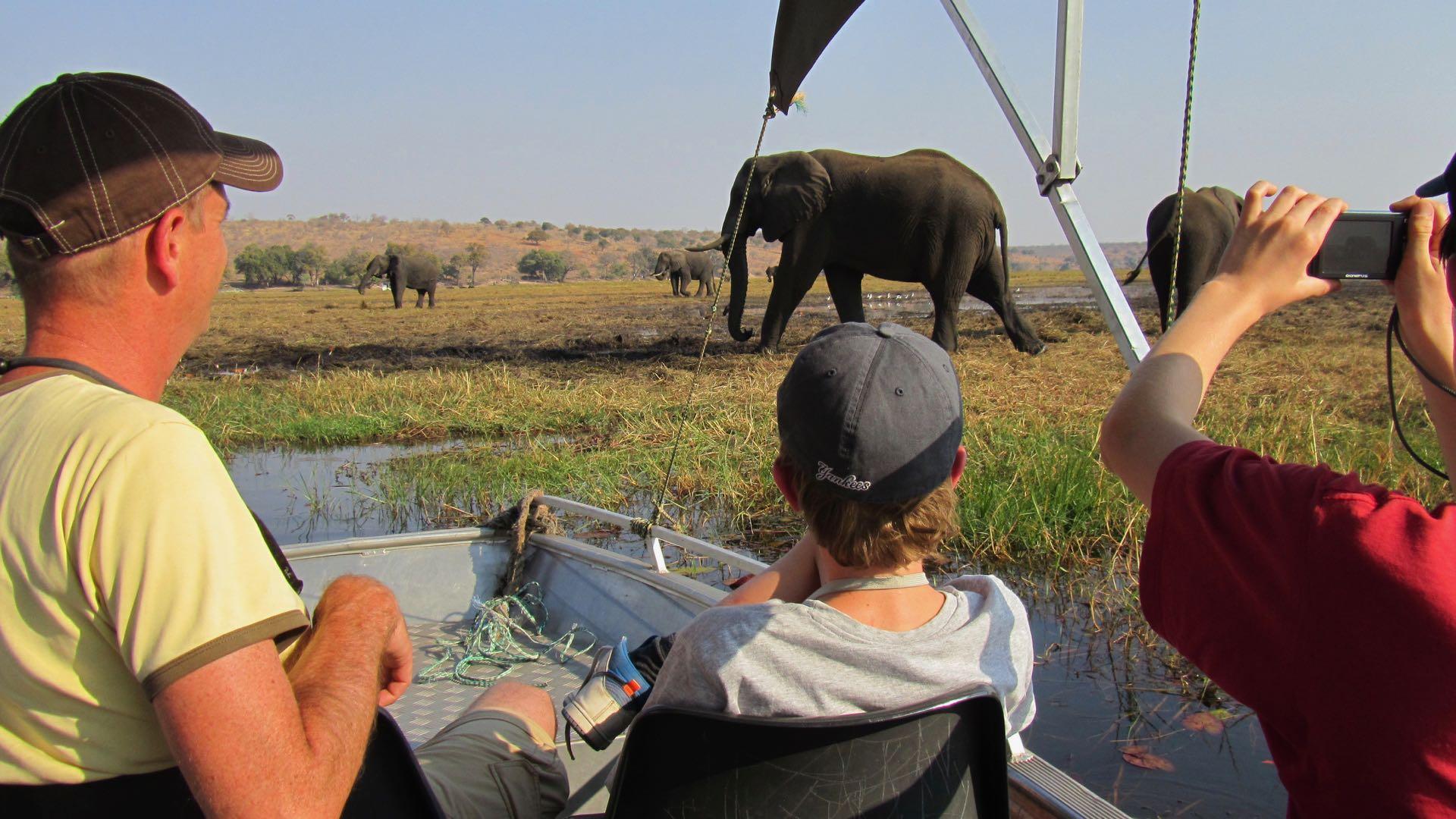 Chobe bootcruise - Botswana