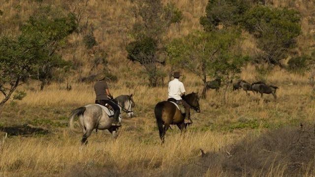 Paardrijden in Kololo Zuid-Afrika Rondreis Op Maat Specialist