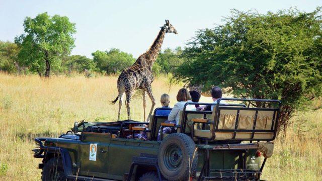 Safari game drive jeep gezin Rondreis Op Maat Specialist