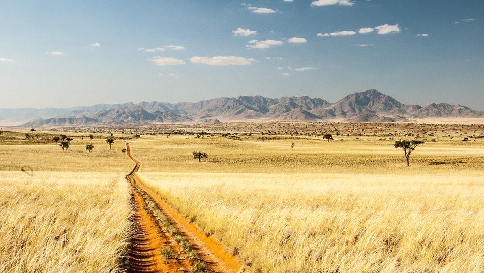 Tok Tokkie Trail - Namibie