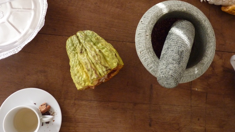 Cacao workshop Suriname Rondreis Op Maat Specialist