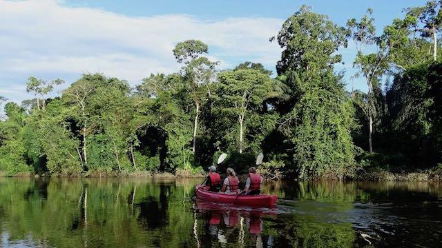 Berg en Dal Suriname Kanoen bij Kabalebo Rondreis Op Maat Specialist