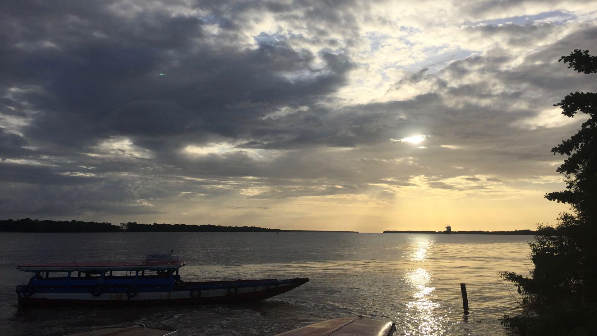 Suriname Dolphin Sunset Cruis Rondreis Op Maat Specialist