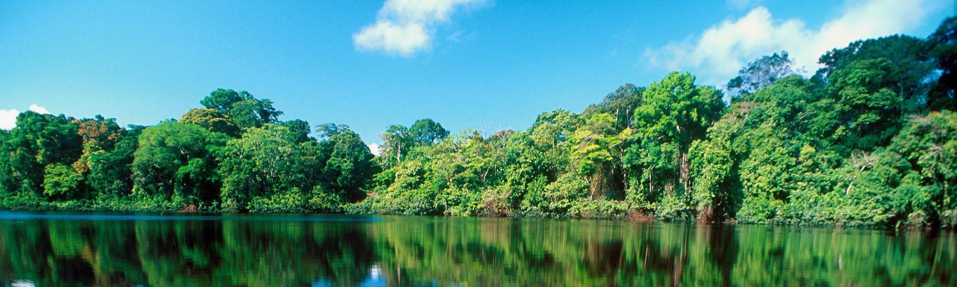 Reizen op maat Costa Rica Tortuguero