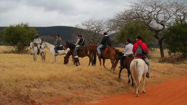 Mlilwane paardrijden Rondreis Op Maat Specialist