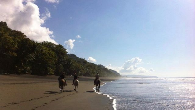 Paardrijden Costa Rica Rondreis Op Maat Specialist