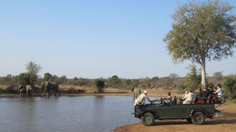 Game drive safari prive park Rondreis Op Maat Specialist
