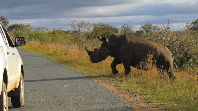 Hluhluwe Safari self drive gamedrive Zuid-Afrika Rondreis Op Maat Specialist