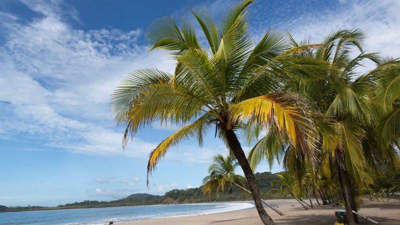 Caribische Kust Strand Cahuita Costa Rica Rondreis Op Maat Specialist