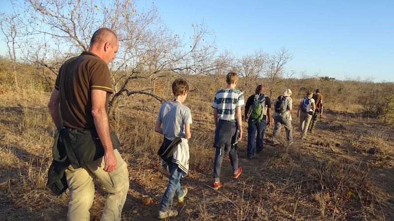 Zuid-Afrika Bushwalk Machampane Rondreis Op Maat Specialist