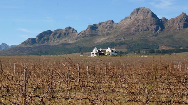 Wijnlanden Zuid Afrika Rondreis Op Maat Specialist