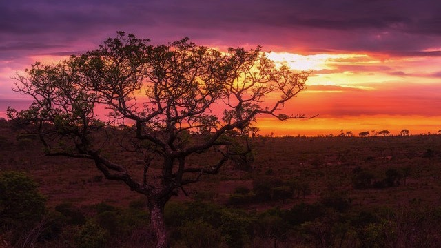 Avondsafari Namibië Kalahari Rondreis Op Maat Specialist