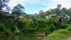 Longhouses-Kalimantan-Indonesië-Rondreis-Op-Maat-Specialist