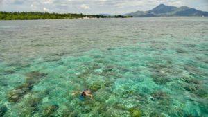 Snorkelen-Bira-Indonesië-Rondreis-Op-Maat-Specialist