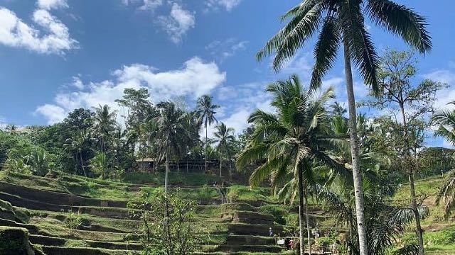 Ubud-Indonesië-Rondreis-Op-Maat-Specialist6